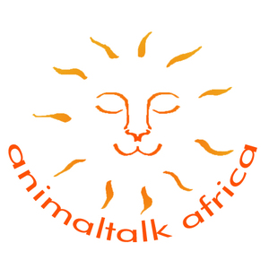 Animaltalk Africa webinar platform hosts A Global Prayer and Meditation for Lions