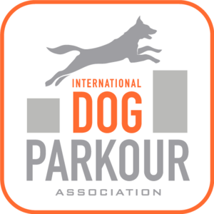 International Dog Parkour webinar platform hosts Easy Enrichment Ideas!