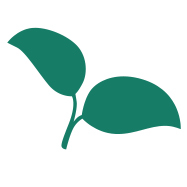 High-res_leaf_icon_-_for_fb_and_twitter_and_job_posting