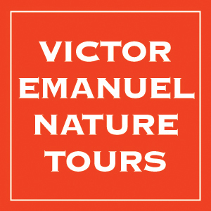 Victor Emanuel Nature Tours webinar platform hosts Traveling with VENT in the Time of COVID
