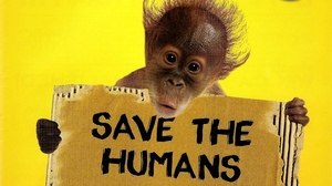 the Orangutan Club International  webinar platform hosts Orangutans in crisis