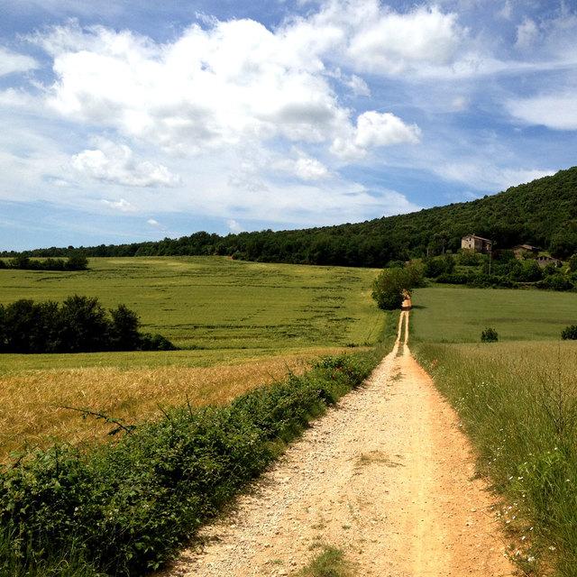 Tuscany-viafrancigena