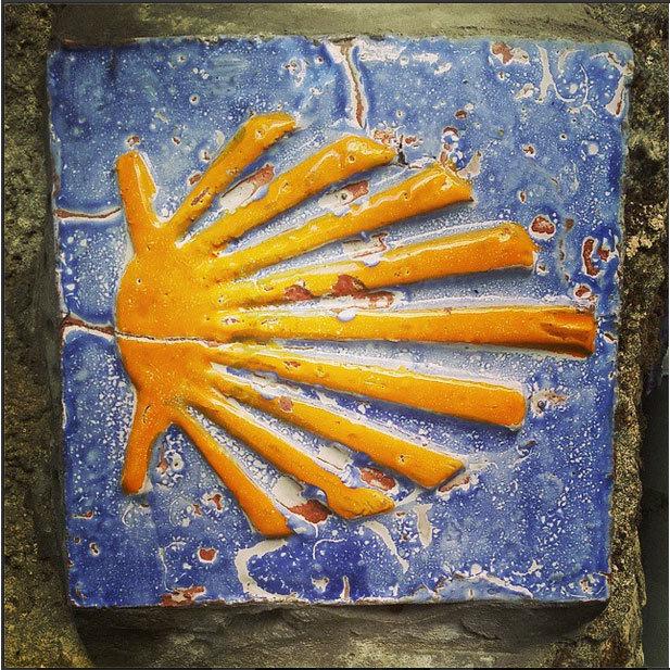 Scallop-shell-ceramic