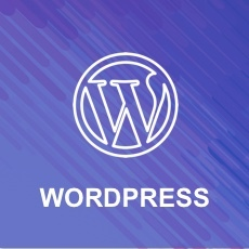 Wordpress_webinar_icon