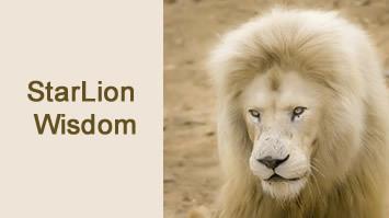 Starlion_wisdom_webinar